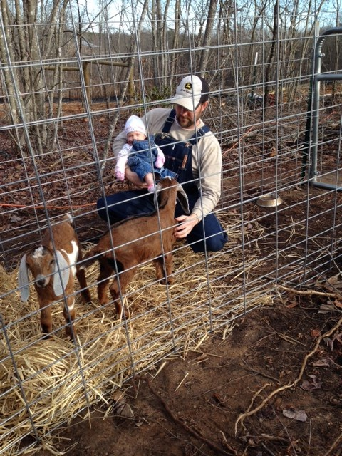 Pleasant Union Farm baby goats