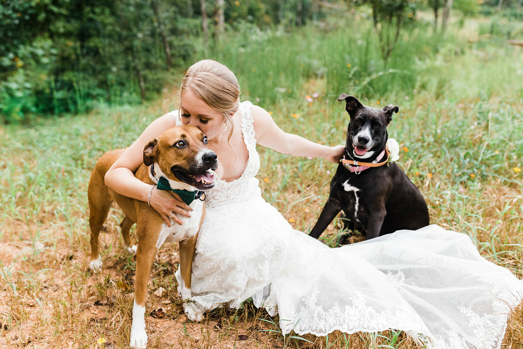 Bridal portraits with dogs in North GA